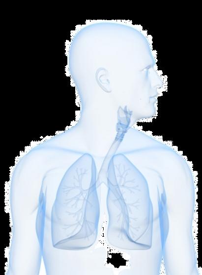 Met ontstekingsremmende zuurstoftherapie is er geen limiet. De zuurstof die je krijgt is voor 90 % zuiver, je kunt zoveel zuurstof innemen als het lichaam aankan.