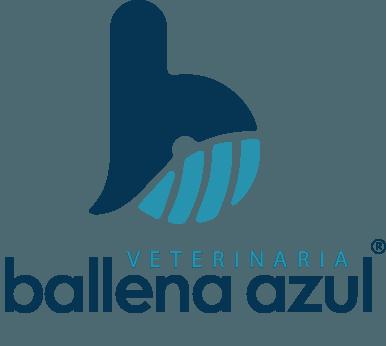 Consulta en V. Ballena Azul