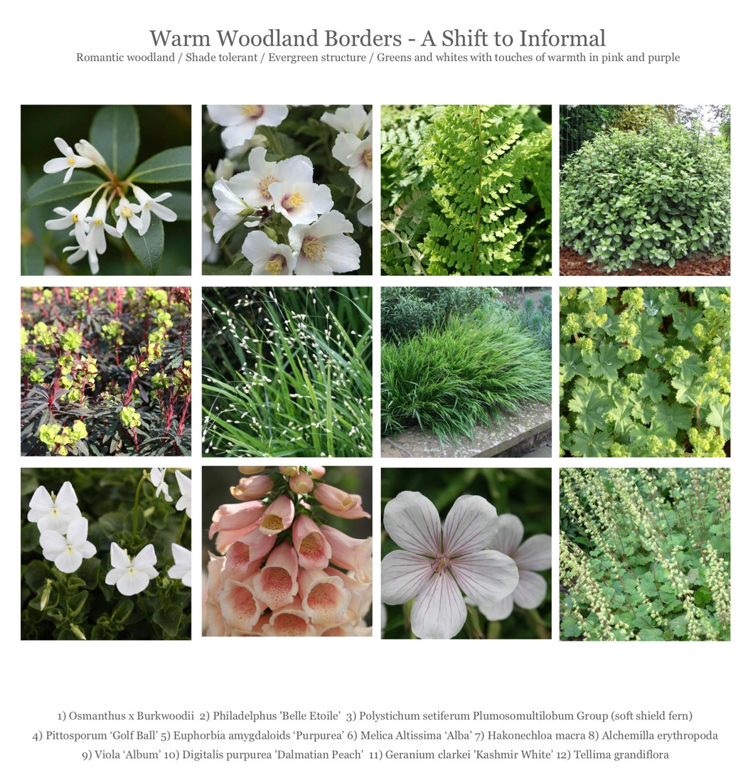 WEbsite Planting4_edited.jpg