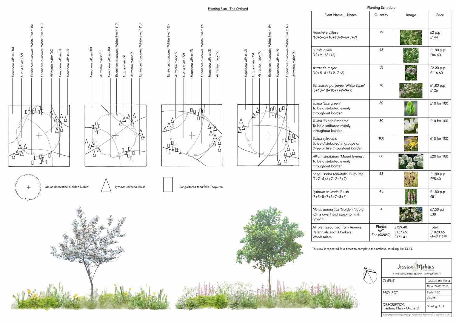 orchard planting plan