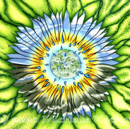 Sunflower Storms