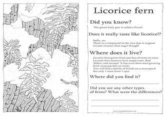 LicoriceFernPageWEB.jpg