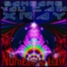 Number's Law Cover art by Dana Newman