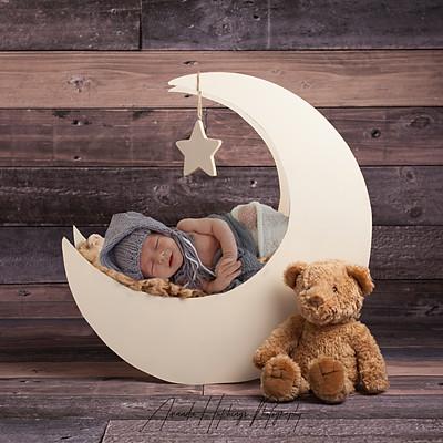 Scott Family/Newborn
