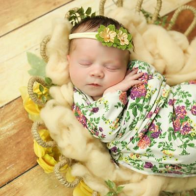 Kinsley Newborn