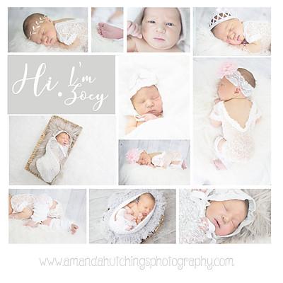 Zoey Ann Warmington- Newborn