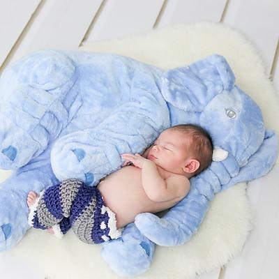 Xander Hamilton Newborn