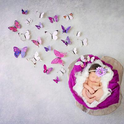 Mia Ann Newborn