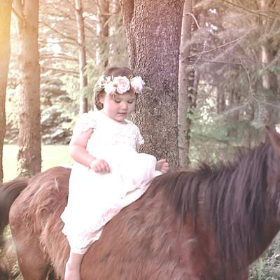 Vintage Unicorn Mini Session- Hendershot