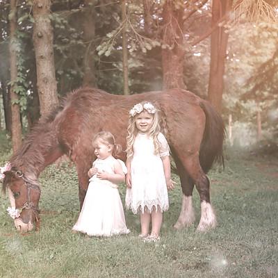 Vintage Unicorn Mini Session- Dirschell