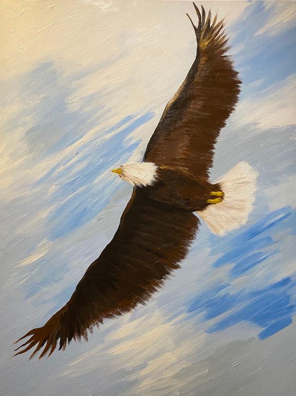 Overhead Eagle (Sold)