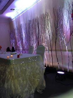 Birch Branch Backdrop