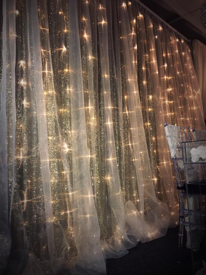 Silver Sequin/Sheer backdrop