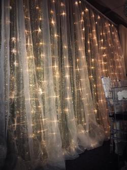 Silver Sequin/Sheer backdrop