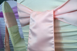 Rouged Spandex with sash