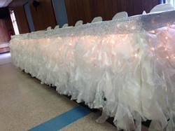 Tu Tu Skirt with lights