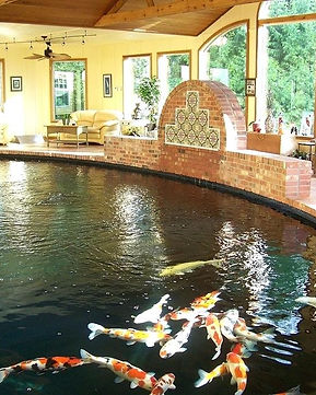 indoor-koi-pond-pond-design-indoor-indoo
