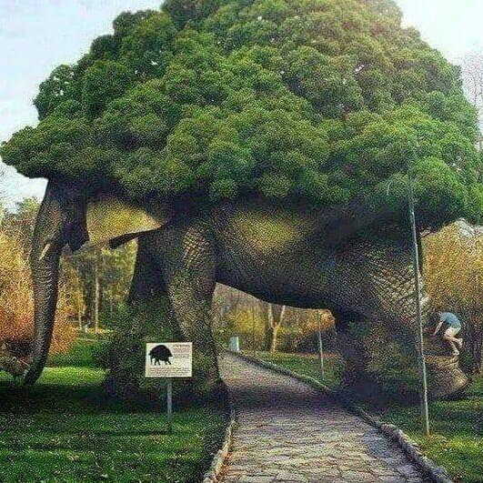 ELEPHANT VERTICAL GARDEN.jpeg