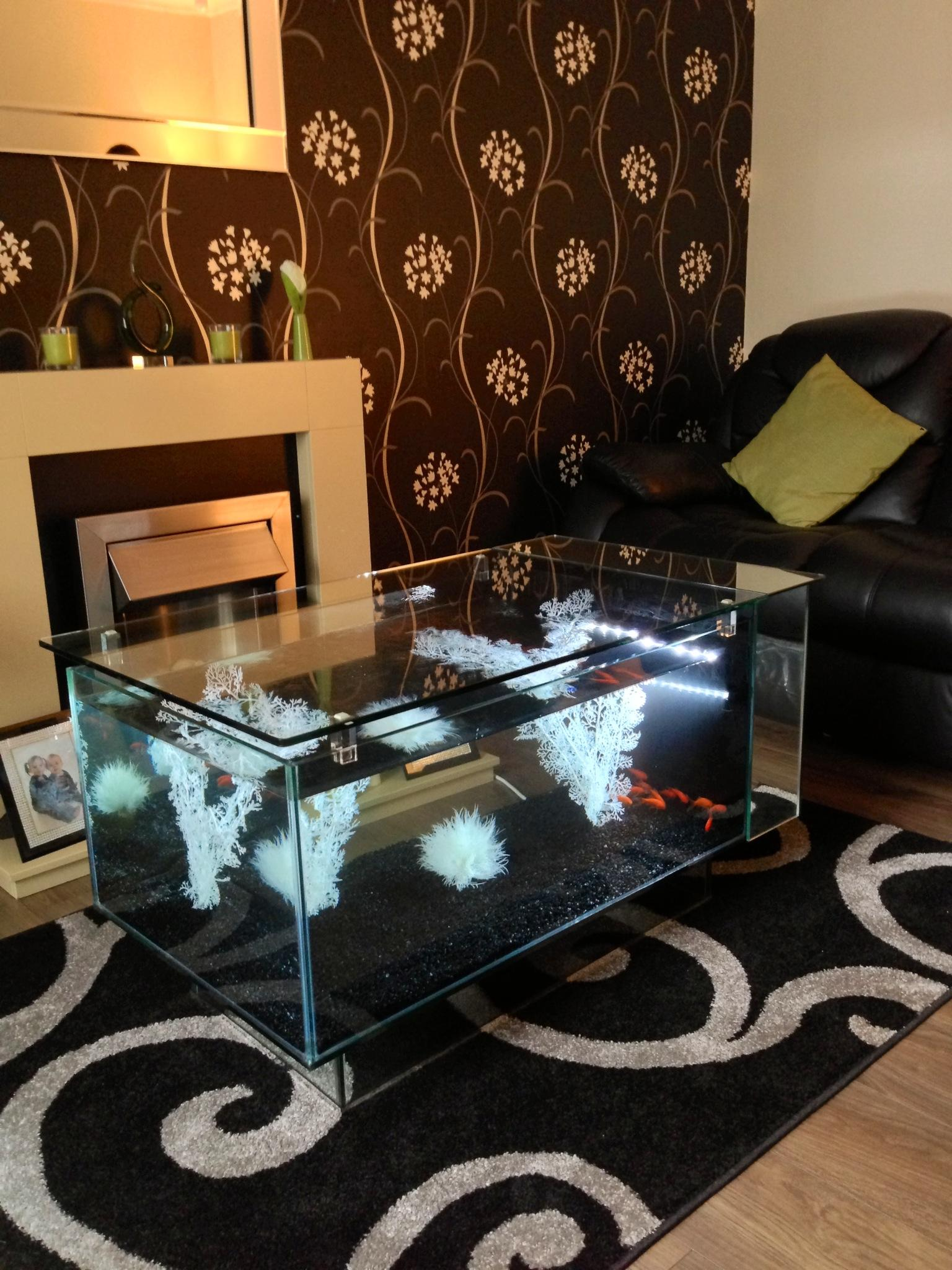 Glass Chrome Tea Table Fish Tank