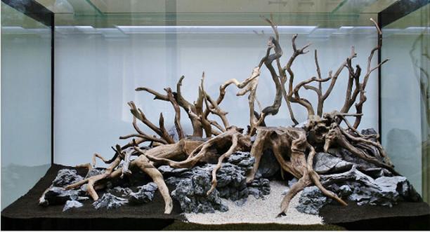 Driftwood Setup