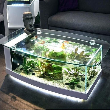 table-aquarium-table-aquarium-aquarium-v