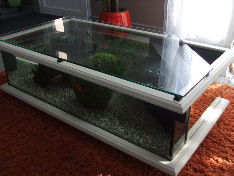 Transparent Wood Tea Table Fish Tank