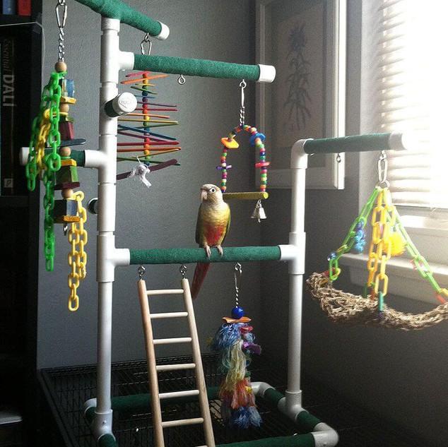 PVC BIRD PERCH MOD34