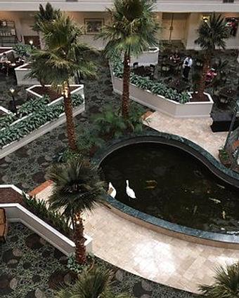 atrium-area.jpg