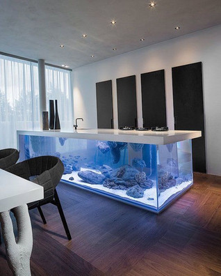 Aquarium Counter