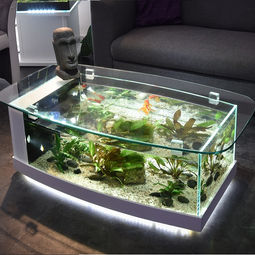 table-aquarium-cintree.jpg