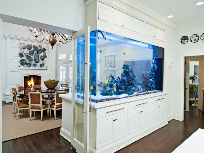 Aquarium Devider