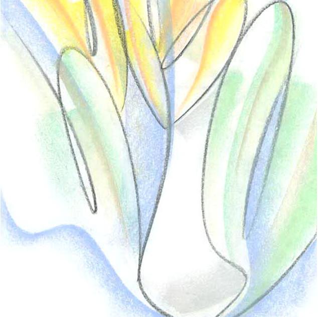 vases-n-pots_4715-2.jpg