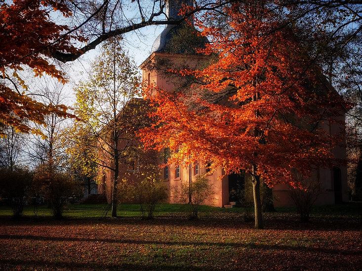 autumn-1036047_1920.jpg