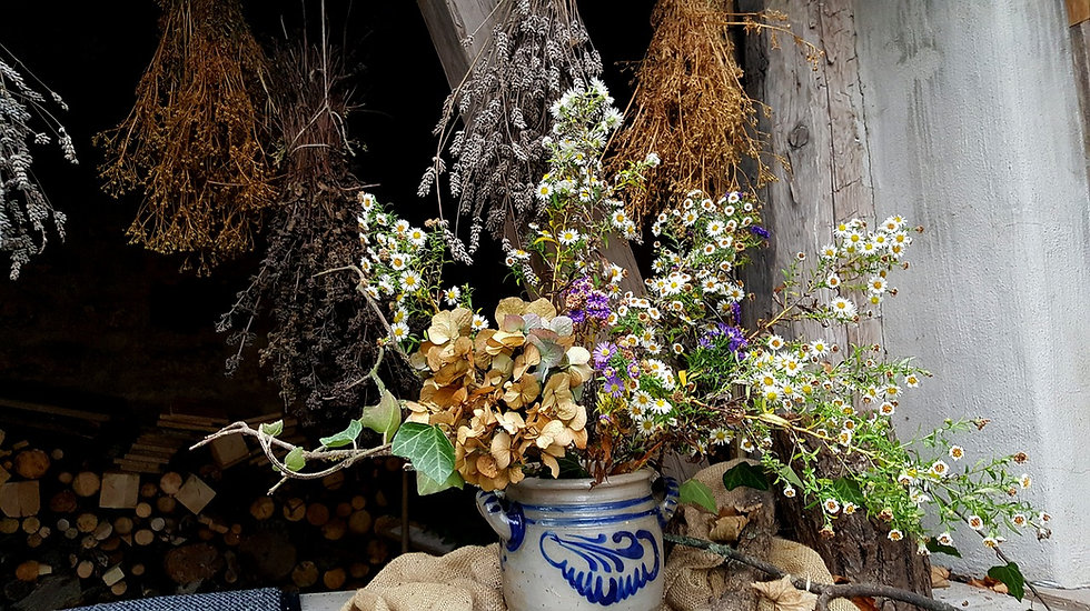 flower-3312721_1280.jpg