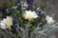 lavender-3627086_1280.jpg
