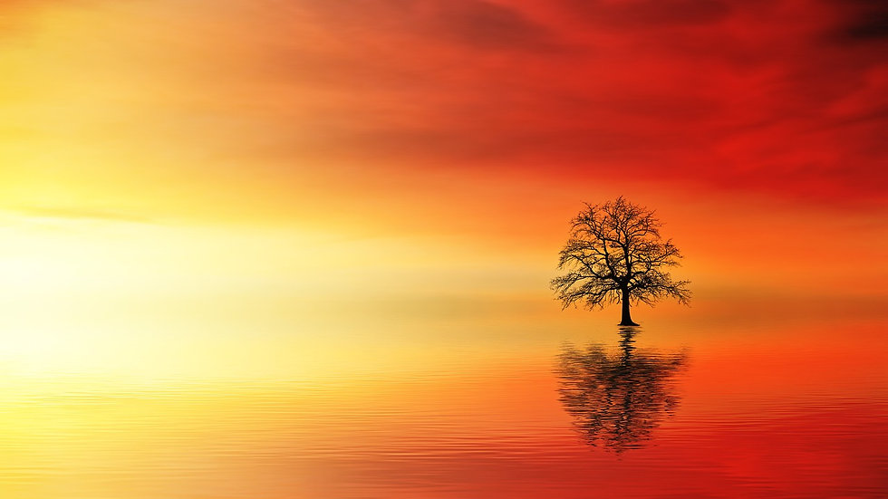 sunset-3097456_1280.jpg