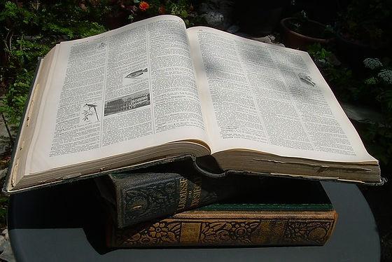 dictionary-2409189_640.jpg