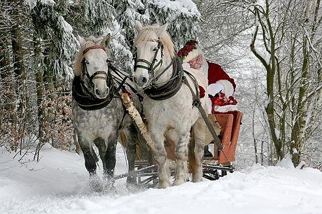 christmas-2949687_640.jpg