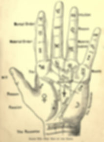 amymlavine-map-of-the-hand.jpg