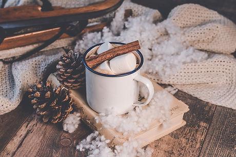winter-3876098_1280.jpg