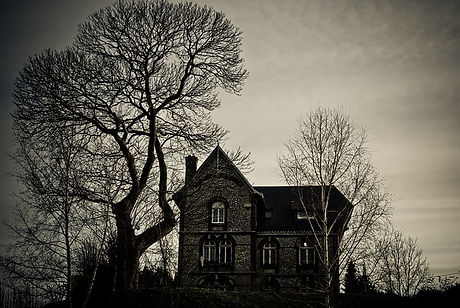 tree-3152959_640.jpg