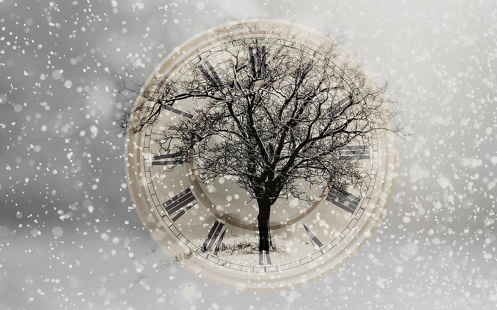 snow-2910676_1280.jpg