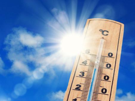 SEMAINE PROCHAINE : Soleil et chaleur font leur grand retour pour notre plus grand bonheur !