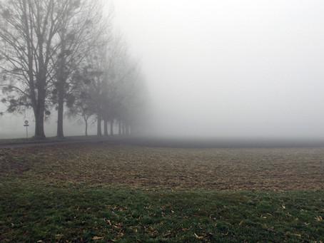 Brouillards, ciel gris et froid dominent par endroits pour ces prochains jours !