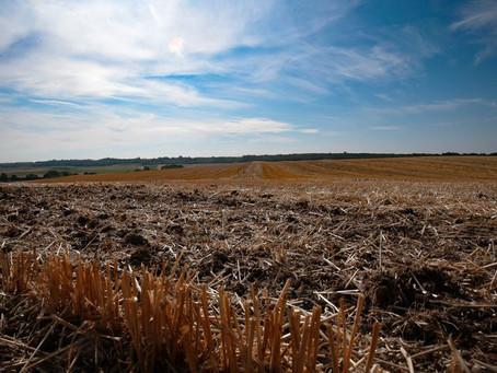 Météo: Le Nord-Isère en manque d'eau !