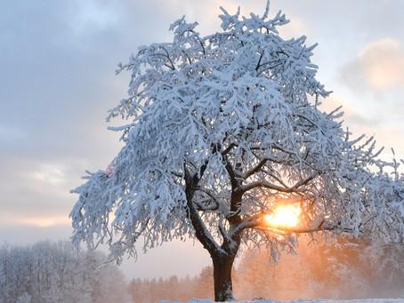 Météo: Semaine prochaine: Vague de froid tardive,  ressenti glacial, risque de neige, quand la Sibér