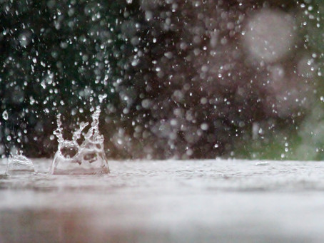 TENDANCES SAISONNIÈRES : Un hiver sous le signe des précipitations mais pas forcément dans la douceu