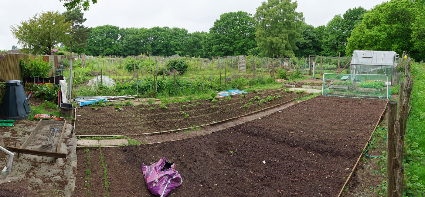 20170529-Grayshott Allotment Panorama