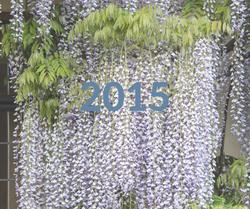 2015 Gallery