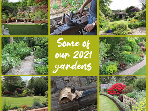 First 10 Gardens Signed Up!